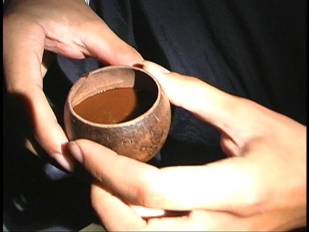 La ceremonia medicinal: usostradicionales